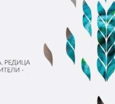 """""""Шарена плетеница"""" – фестивалът, който топли бездомните"""