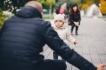 7 разлики между обикновения и мъдрия родител